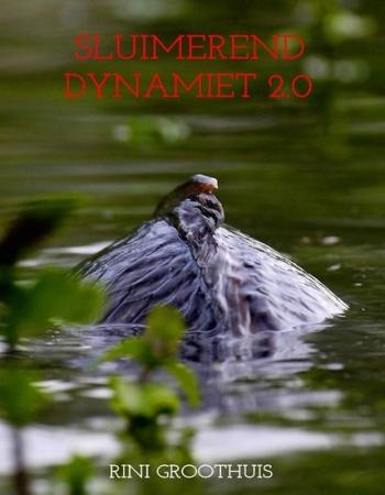 Sluimerend Dynamiet 2.0